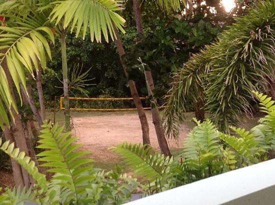 Casa Verde Hotel: volleyball