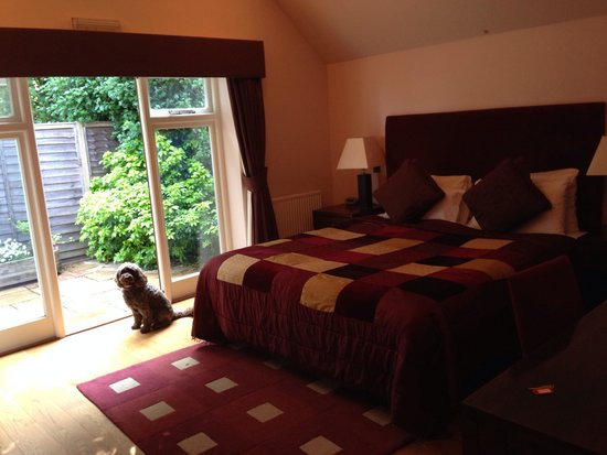 The New Inn: Huge room and dog friendly too!