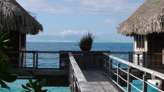 Conrad Bora Bora Nui : Water view