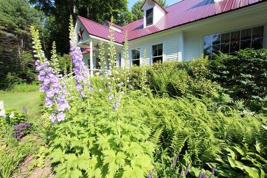 Buttonwood Inn on Mount Surprise: Buttonwood
