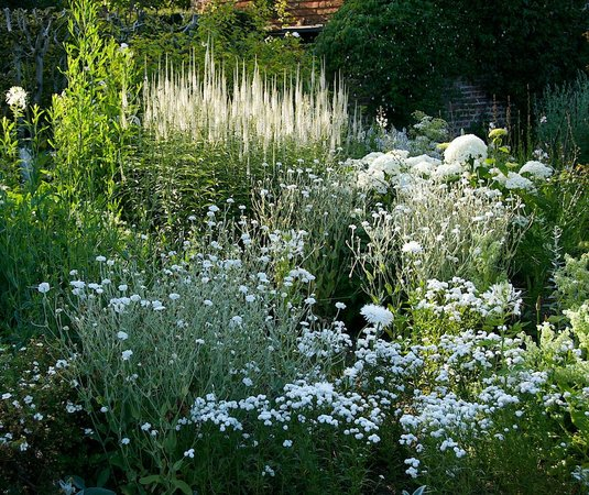 The white garden picture of sissinghurst castle garden