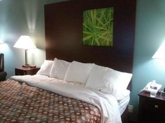 Surestay Plus Hotel by Best Western Kearney: King Bed