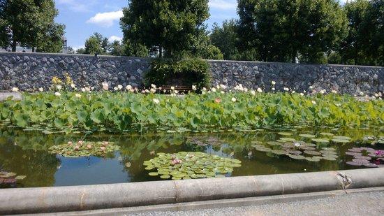 Biltmore Estate : the gardens