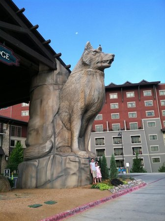 Great Wolf Lodge Grapevine : The Big Welcome