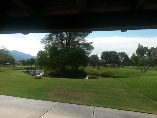 Omni Tucson National Resort: The view from our sliding glass door (complete w/ ducks for the kids), not too shabby...