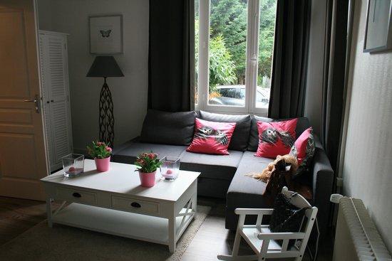 Le Clos Saint Raphael: il soggiorno con divano letto a pian terreno della dependance