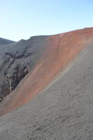 Pico Do Fogo: beautifuly colored larva