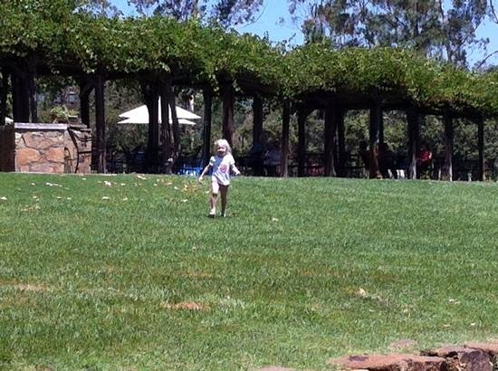 Orfila Vineyards & Winery: daughter running on the lawn