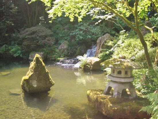 Portland Japanese Garden: Pond at Japanese Garden