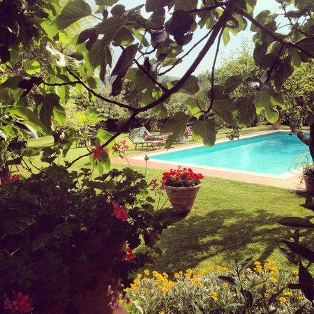 Poolside @ il Casolare di Libbiano