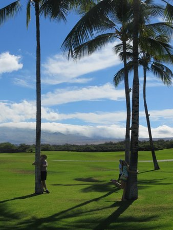 Fairmont Orchid, Hawaii : Hotel grounds looking towards golf course