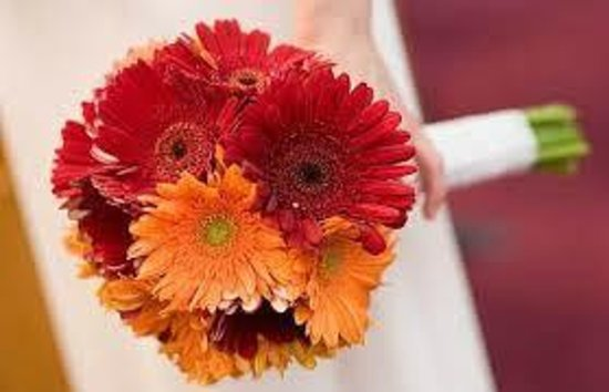 Always Forever Weddings And Receptions Gerbera Daisy Bouquet 35 Find At Weddingwire
