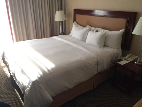 Hilton Vancouver Airport: King room