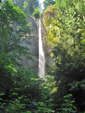 Columbia River Gorge National Scenic Area: One of the falls along the road.