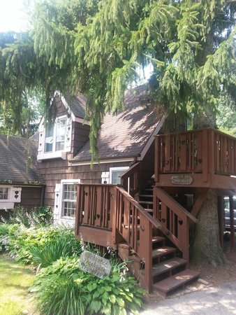 Lazy Cloud Lodge Bed and Breakfast : Enchanted Treehouse from outside