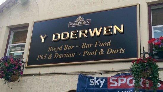 The Oak - Y Dderwen