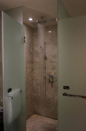 Crowne Plaza Hong Kong Kowloon East: Rainfall Shower