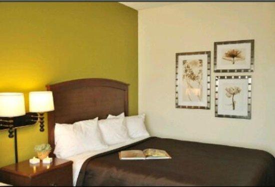 AmericInn Hotel & Suites Stillwater : standard guest room