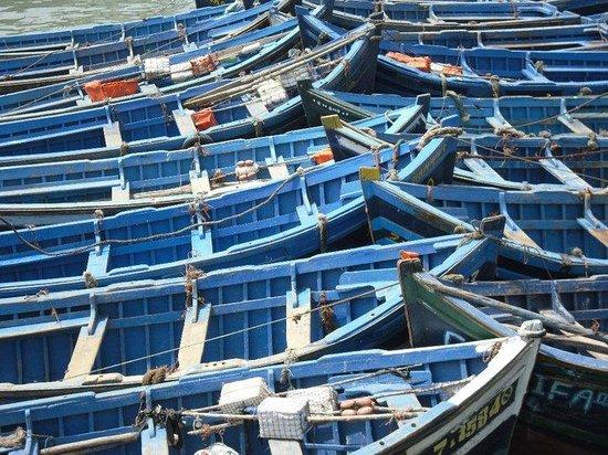 Remparts d'Essaouira : O que também pode ver em Essaouira...