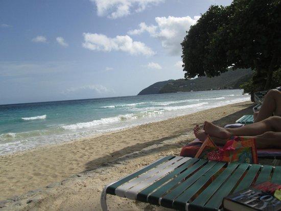Sebastian's on the Beach: View down the beach