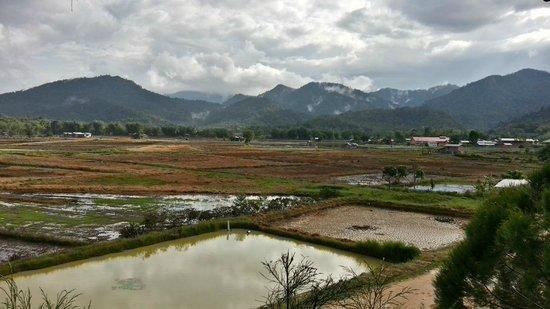 The Ngimat Ayu House: View from the Ngimat Ayu