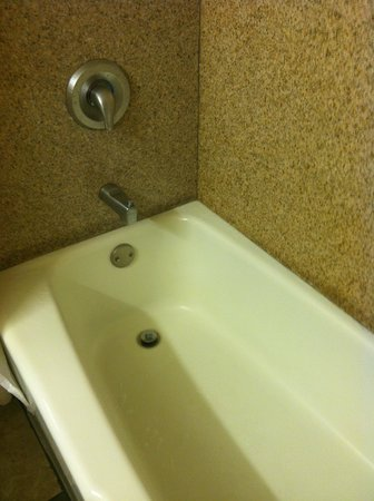 Quality Inn & Suites Conference Center: Bathroom Tub
