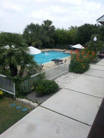 Hotel Alsace & Spa Resort: Swimming Pool