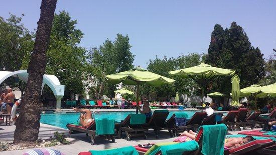 The Orangers Beach Resort & Bungalows: Pool 2