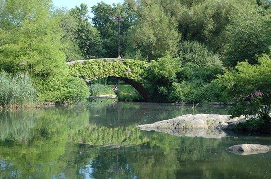 Central Park: Gapstow bridge over lake