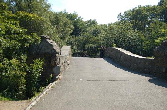 Central Park: Gapstow bridge