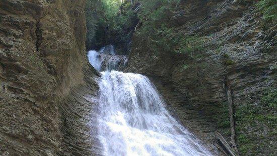 Tappen, Canadá: Margaret falls