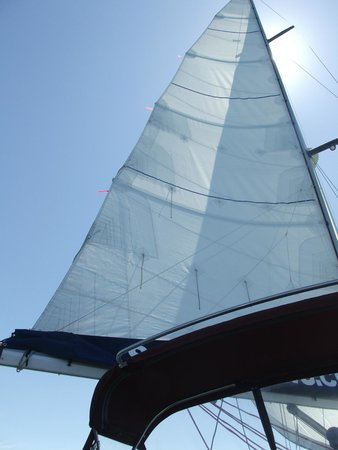 Central Coast Sailing Charters : Hoisted sail in the morning sun