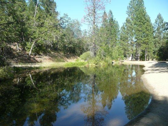 Lone Mountain RV Resort: Swiming hole