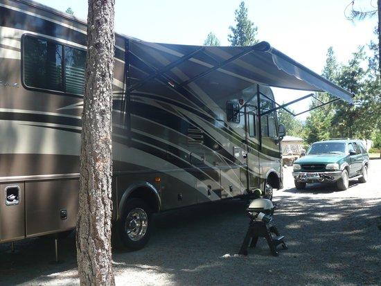 Lone Mountain RV Resort: Campsight