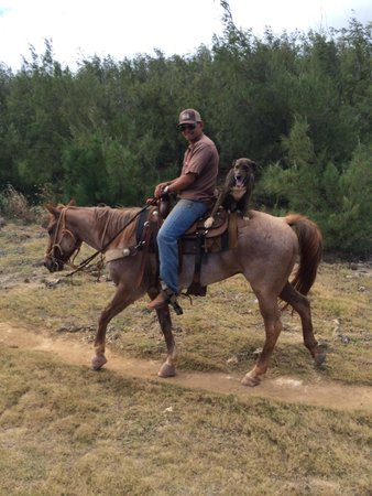 CJM Country Stables : He likes horseback riding too!
