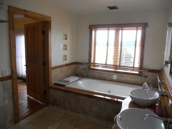 The Rhinecliff : Incredible soaking tub & view of river