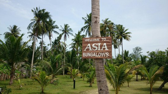 Asia Bungalows: Fantastisk sted