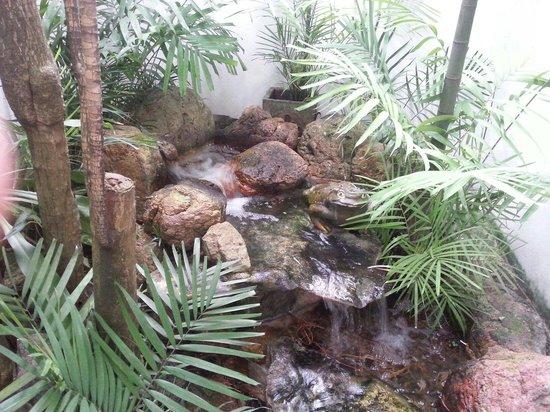 Baru Lodge: Jardin zen