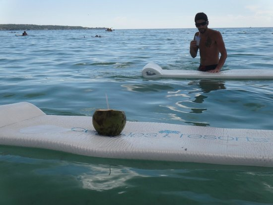 Couples Swept Away: floating coconuts