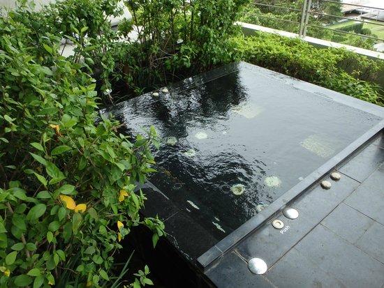 Millennium Hilton Bangkok: อ่างจากุชชี่ ในสวนลอยฟ้า ชั้น 4