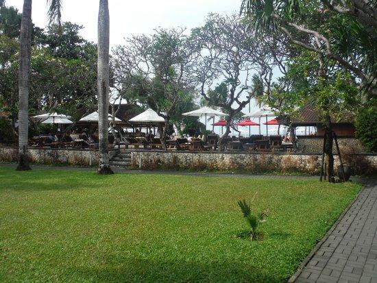 Griya Santrian: overlooking the pool