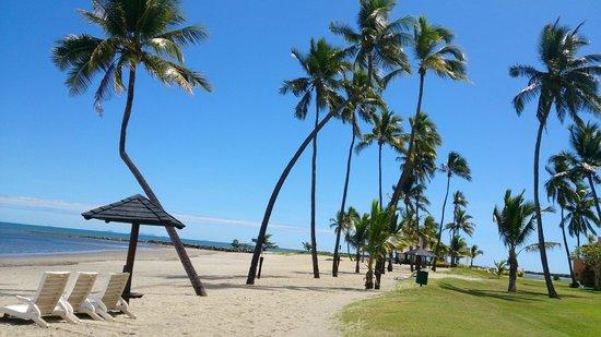 Sheraton Fiji Resort: The beach