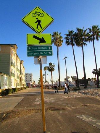 Bike Rentals In Venice Beach California