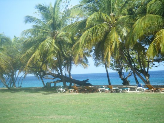 Grenadian by Rex Resorts : Lots of lounge chairs on the beach..walk to your left to find a restaurant on the beach
