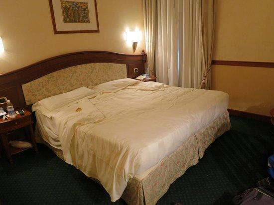 Hotel Degli Orafi : room