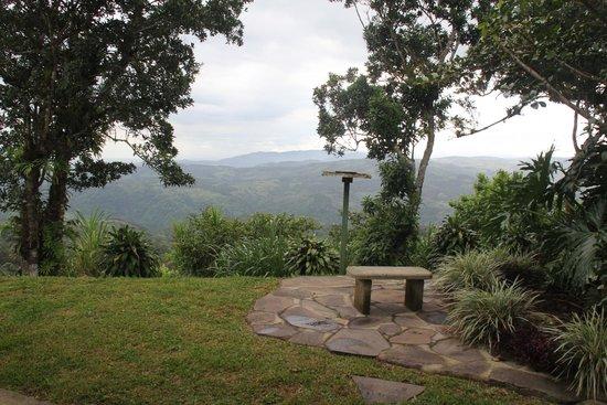 Vista Valverde Bed & Breakfast: Beautiful landscaped grounds