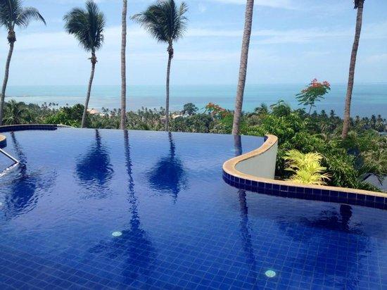 Seaview Paradise Resort Hotel : piscine à débordement, magnifique vue sur lamai beach