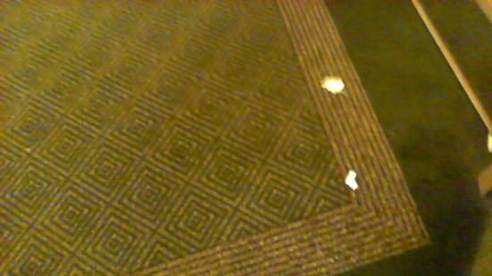La Quinta Inn & Suites Orlando UCF: Trash in the hallway