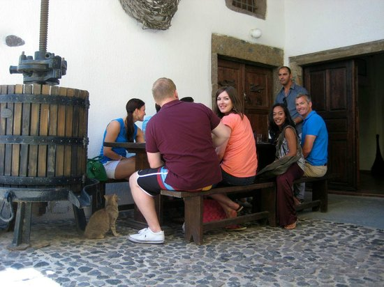 Santorini Wine Adventure : Gather round to start tasting the wine.