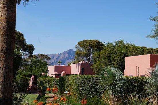 Arizona Inn : Mountain views